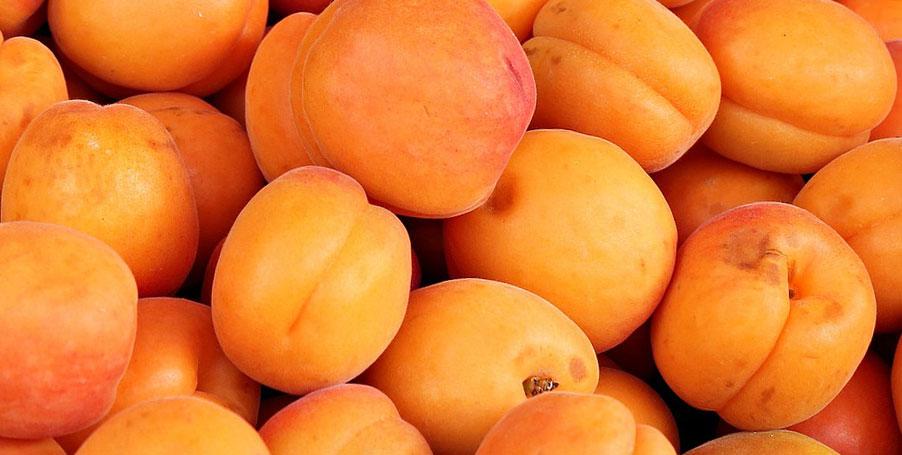 Полезность персиков для беременных 45